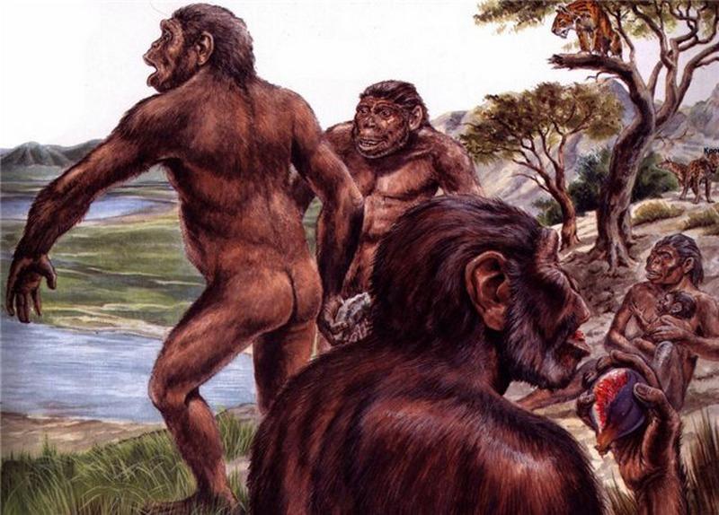 древние предки человека картинки поддеваем