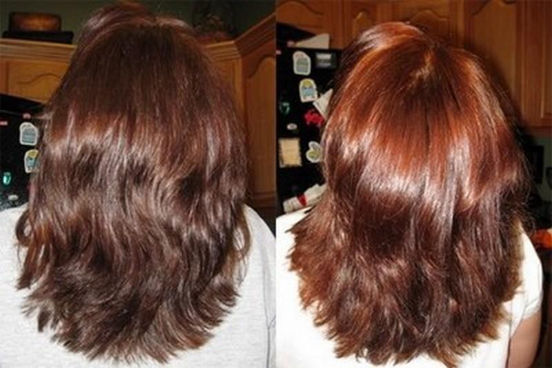 фото до и после покраски басмой папы-льва